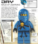 Jay Ninja of Lightning
