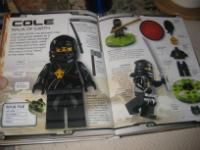 LEGO Ninjago Cole