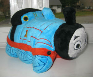 Thomas pillow pet side view